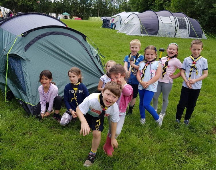 Photo of cubs on outdoorm activity
